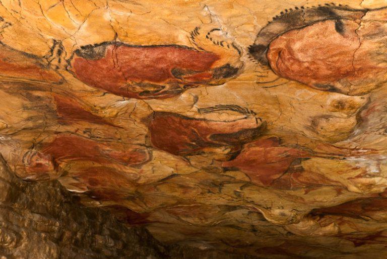 Cuevas de Altamira. Museo de Altamira y D. Rodríguez, del Arte Rupestre una vista del techo la cueva donde se observa una muestra de pintura prehispanica