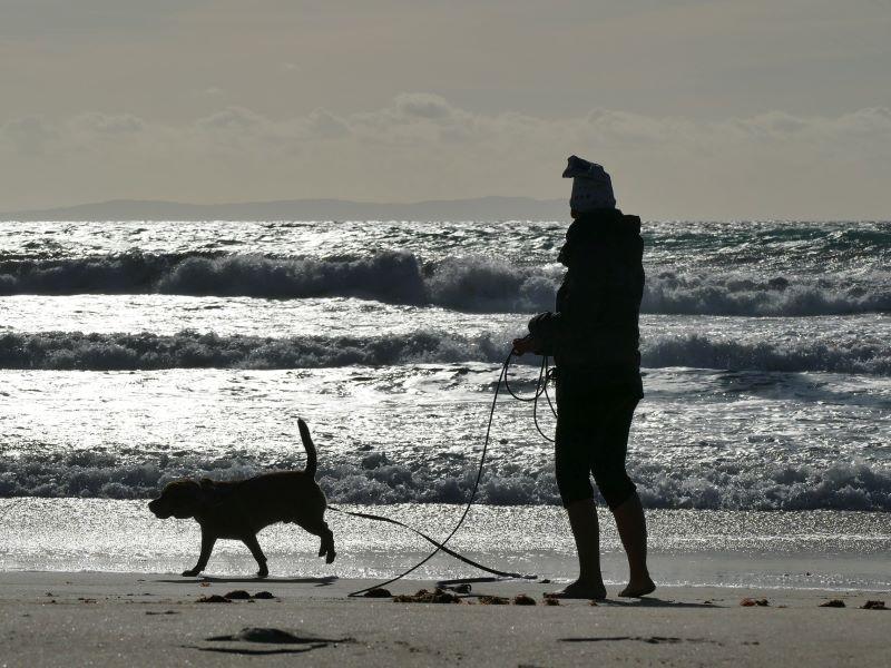 El Peludo y yo en el mar
