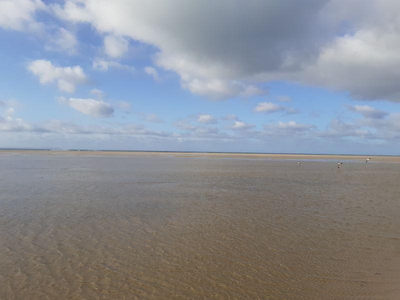 Reserva Natural de Tarifa