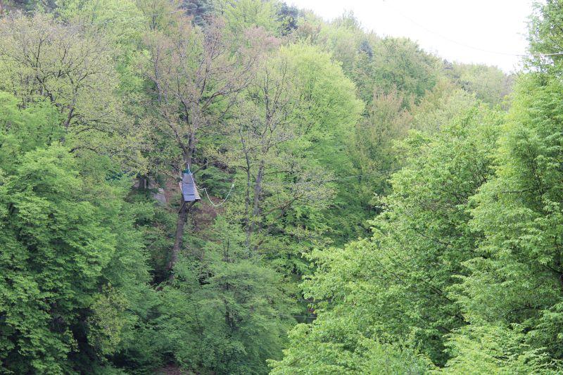 Wildpark Heigenbrücken para subirse con los niños