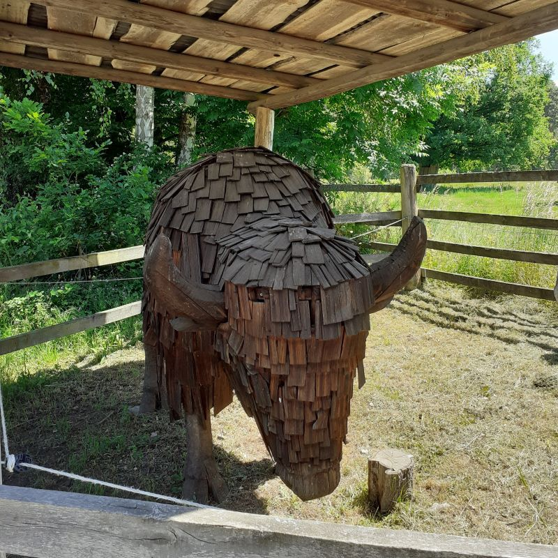 Bisonte de Madera en un Zoo
