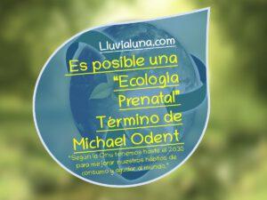 """Es posible una """"Ecología Prenatal"""" Término de Michel Odent."""